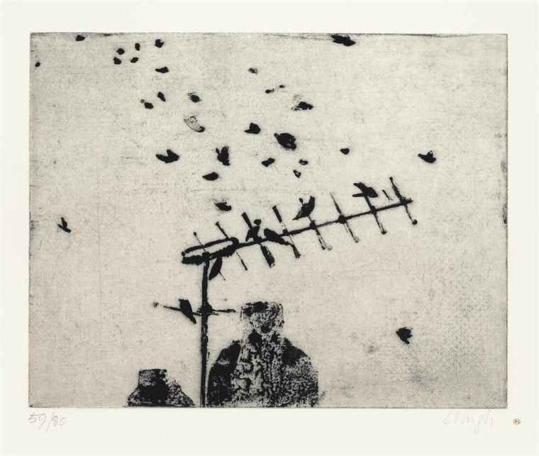 prunella_clough_starlings