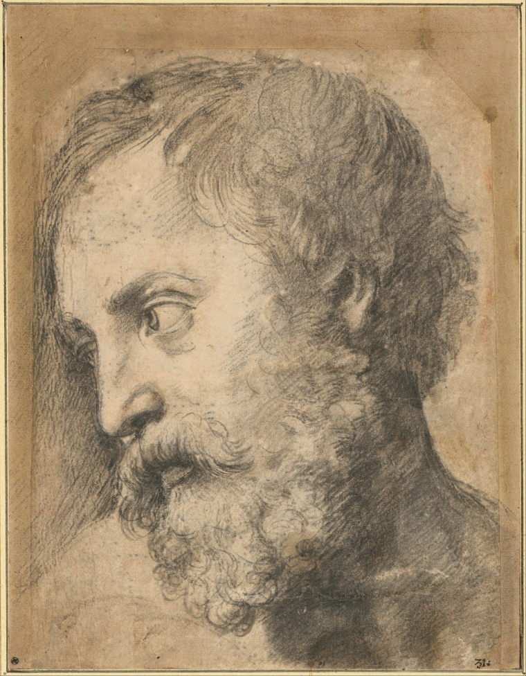 Raphael_-_Head_of_An_Apostle_in_the_Transfiguration,_1519-1520_-_Google_Art_Project